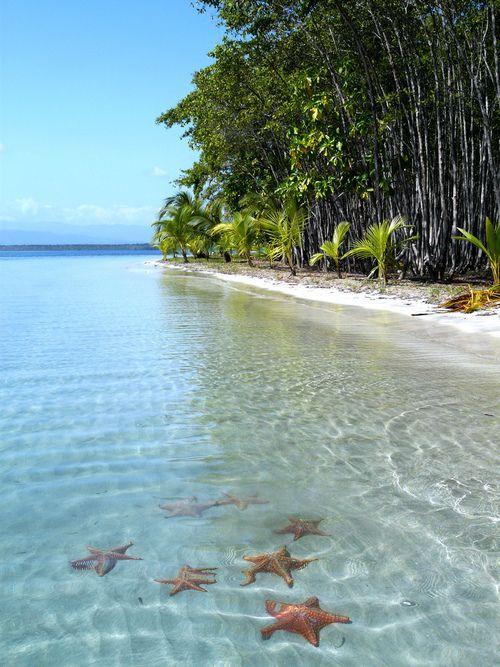 60 Imágenes de las playas paradisíacas más bonitas