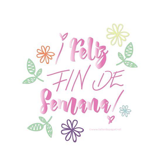 find-17