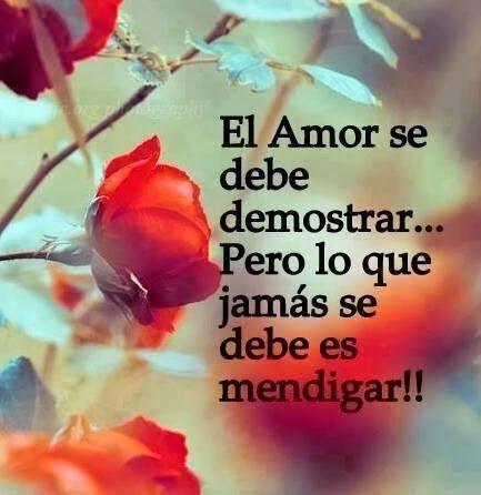 amor-23