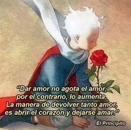 amor 17