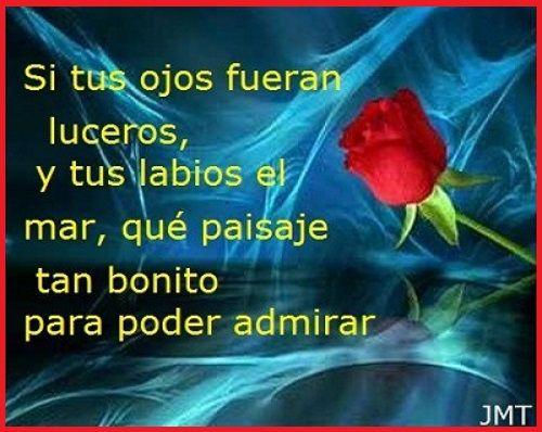 amor-16