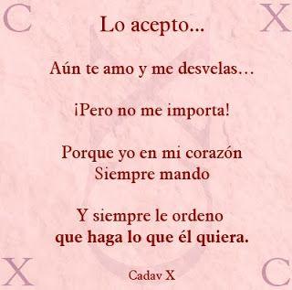 amor-30