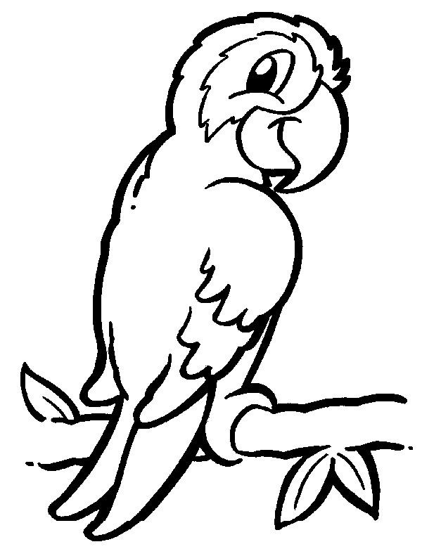 Dibujos Para Colorear Animales De La Selva Online Imagenes Totales