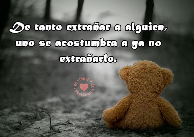 Triste Peluche Esperando Frases Tristes De Amor A Distancia