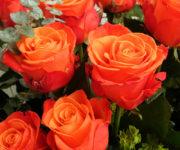 Imágenes de ramos de rosas para toda ocasión