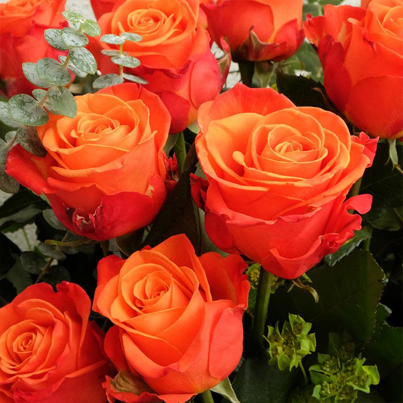 Im genes de ramos de rosas para cumplea os novia madre - Ramos de flores grandes ...