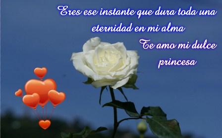 Rosas Blancas Con Frases De Amor Para Dedicar Imagenes Totales