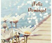 Imágenes de Feliz Domingo con mensajes y frases bonitas